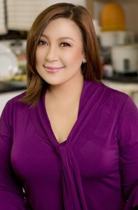 A DRAMA SERIES FOR MEGASTAR SHARON CUNETA?  l www.todoentertainment.com